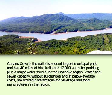 Carvins Cove is the nation's second largest municipal park and has 40 miles of bike trails and 12,000 acres for paddling plus a major water source for the Roanoke region. Water and sewer capacity, without surcharges and at below-average costs, are strategic advantages for beverage and food manufacturers in the region.